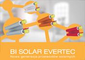 m_bi_solar_evertec